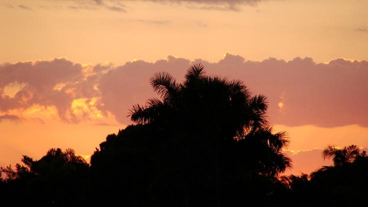 Pretty night sky in Bradenton, FL   Inspirations in my life in DeWitt ...