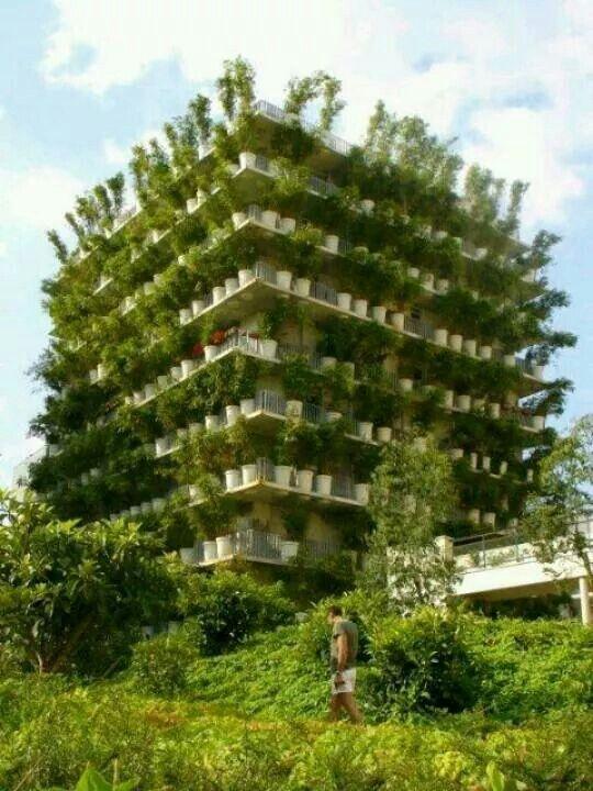 Seran los edificios del futuro?