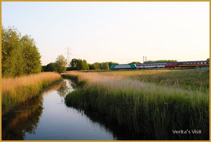 Between March & September Verita's Visit explores the #Dutch #countryside by #bike. Join her in bicycle tours & discover the secrets of #nature in #Holland. http://veritasvisit.nl