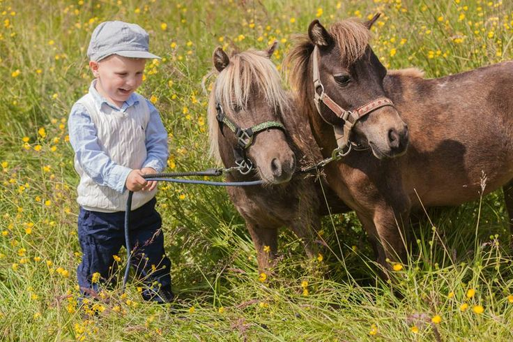 little boy and his ponies