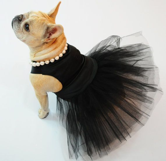 French Bulldog Princess modeling 'The Little Black Dress', Dog Couture by ForRosie on Etsy
