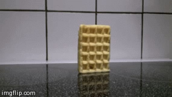Just a waffle falling over