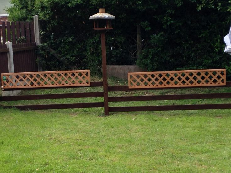 Fencing and bird feeder by Jason Brown
