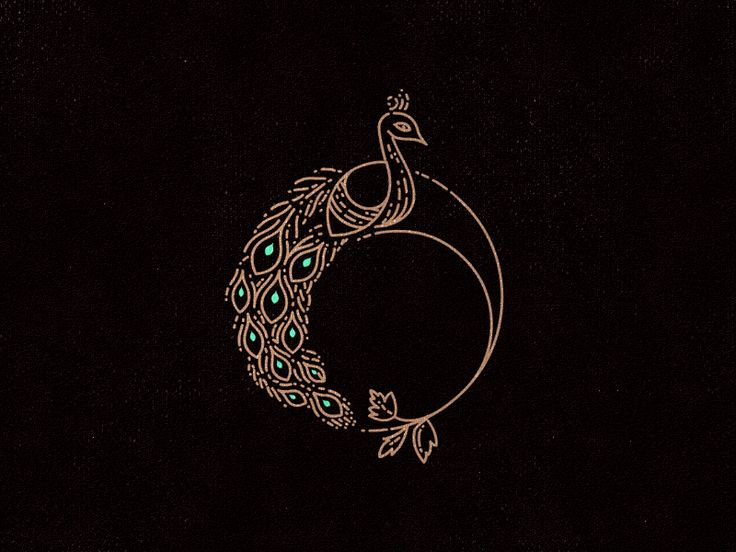 Peacock by Joe White