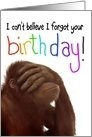Monkey business--I can't believe I forgot your birthday.  Yikes!