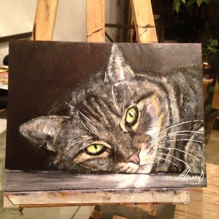 Gatto, dipinto su ardesia