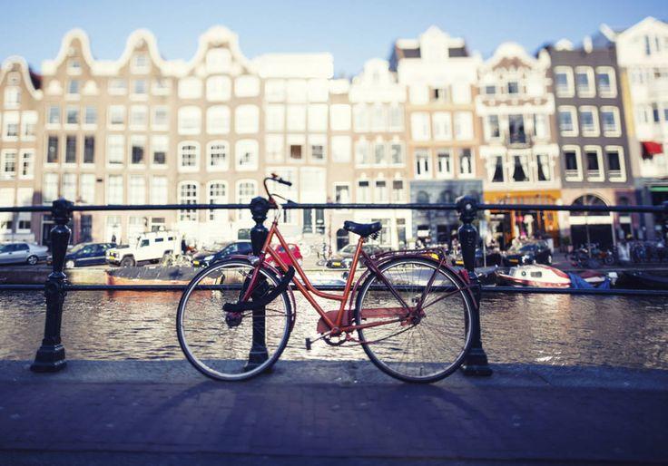 Que faire à Amsterdam : notre guide de bonnes adresses pour tout ce qu'il faut faire à Amsterdam - Elle