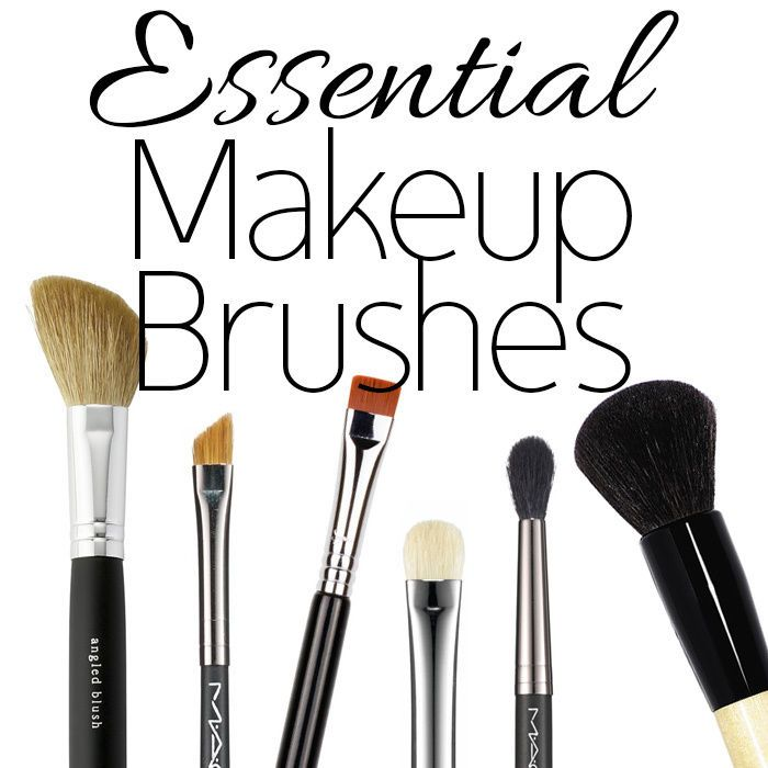Great guide to basic #makeup brushes!:
