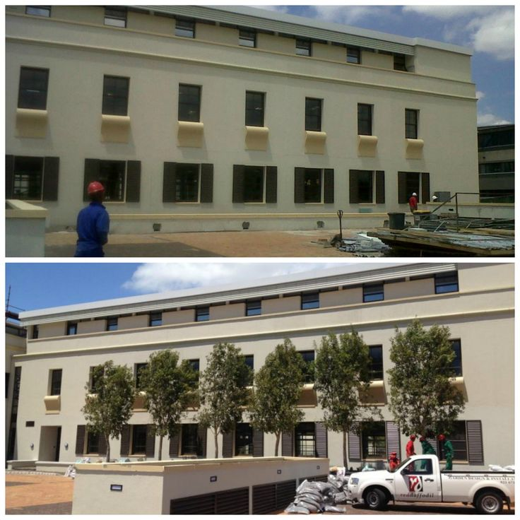 In 2013 we planted these Syzygium guineense at Sanlam Investment Managers Office with Chris Maddams from Red Daffodil Landscaping. The tall western facade of the building needed softening and these lovely indigenous evergreens did just the job :)