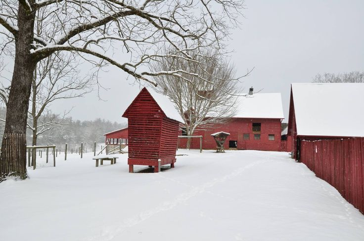 The NPS shared the barns at the Carl Sandburg Home in Flat Rock, NC. Looks like they've been iced by the late February snow!
