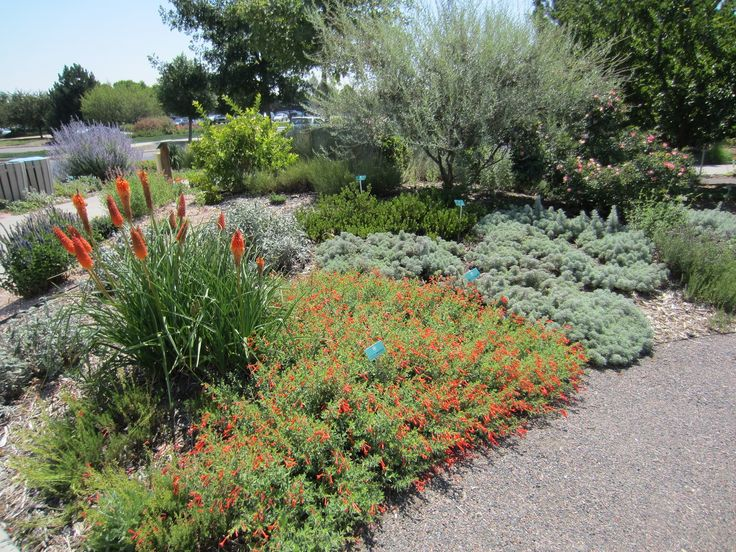 118 best images about 0 scape dry beds on pinterest for Garden design xeriscape