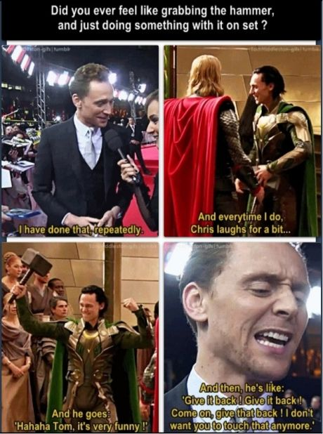 Tom really is a happier version of Loki. Chris acts like my sister when she wants something that I take of hers! And she isnt small.