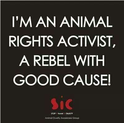 I'M AN ANIMAL RIGHTS ACTIVIST, A REBEL WITH A GOOD CAUSE! - Help Stop Animal Cruelty - Animal Cruelty Awareness Group