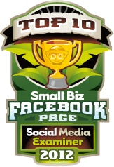 Small Business Facebook page winners