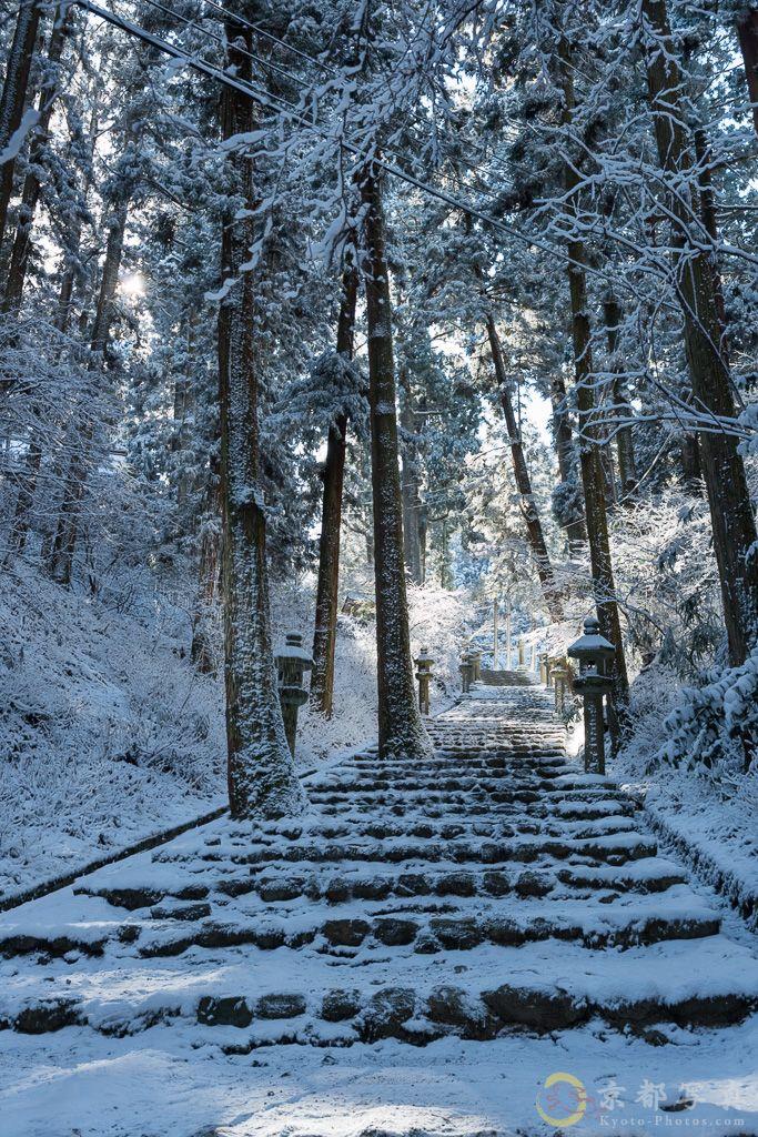 静まり返る比叡の森のなかで 【延暦寺】| Japan