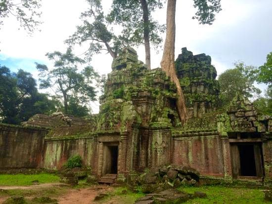 Holiday Ta Prohm | News Holiday Travel #Asia #Destination #SiemReap #HolidayPackage
