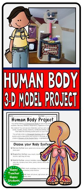 Human Body Project: 3-D model of one Body System (Respiratory, Digestive, Circulatory, Skeletal, or Nervous System) using fun and creative materials.
