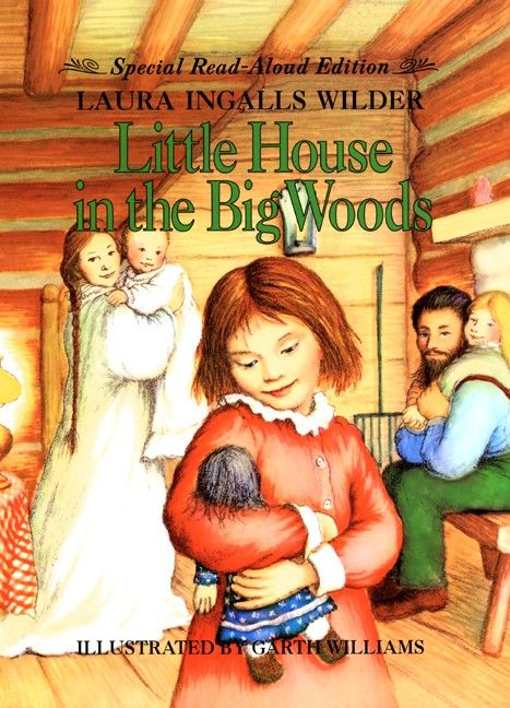 How I loved the Little House series!