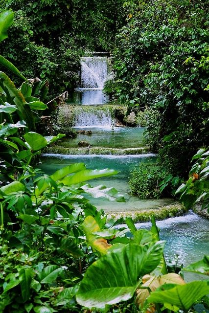This is the Cascade Waterfalls in Vanuatu. I visited these waterfalls a few years ago with my family. It was a great experience in Vanuatu and it was great to learn about a different culture.