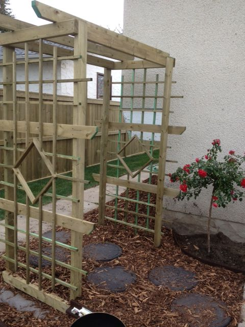 another shot of the Arbor