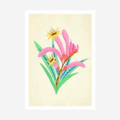 Native flora art print - kangaroo paw