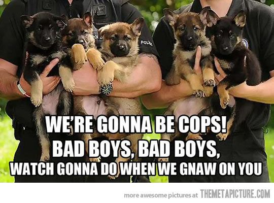 We're gonna be cops…
