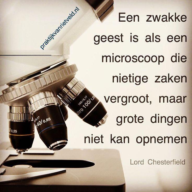Een zwakke geest is als een microscoop die nietige zaken vergroot maar grote dingen niet kan opnemen. - Lord Chesterfield