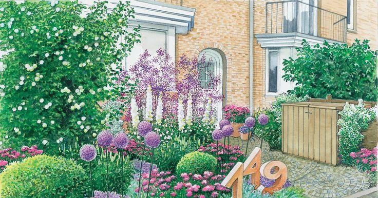 Ein städtisch gelegener Vorgarten eines Reihenhauses soll neu gestaltet werden. Wir präsentieren zwei Gestaltungsideen mit Pflanzplänen als PDF zum Herunterladen und Ausdrucken.