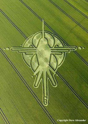 The Humming Bird Nazca Lines Peru Crop Circle ... Reported on July the 2nd, 2009 at Milk Hill, near Stanton St Bernard, Wiltshire...