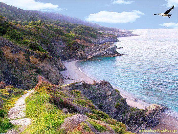 Skopelos  Island - Perivolos beach, Greece