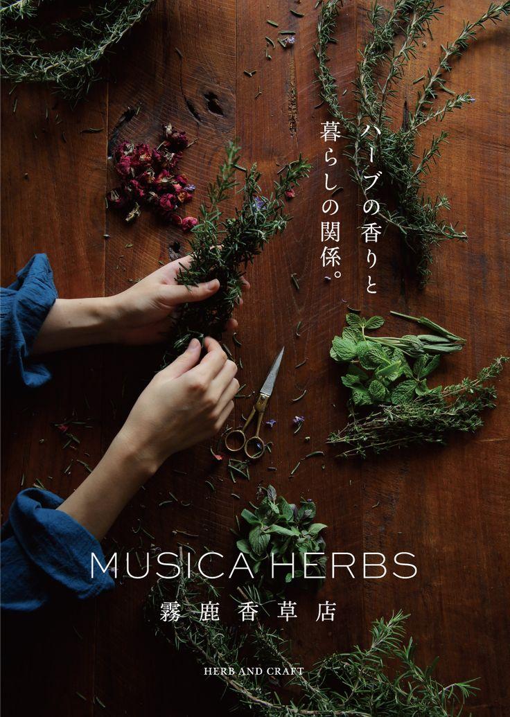 Musica Herbs - Keitaro Terasawa