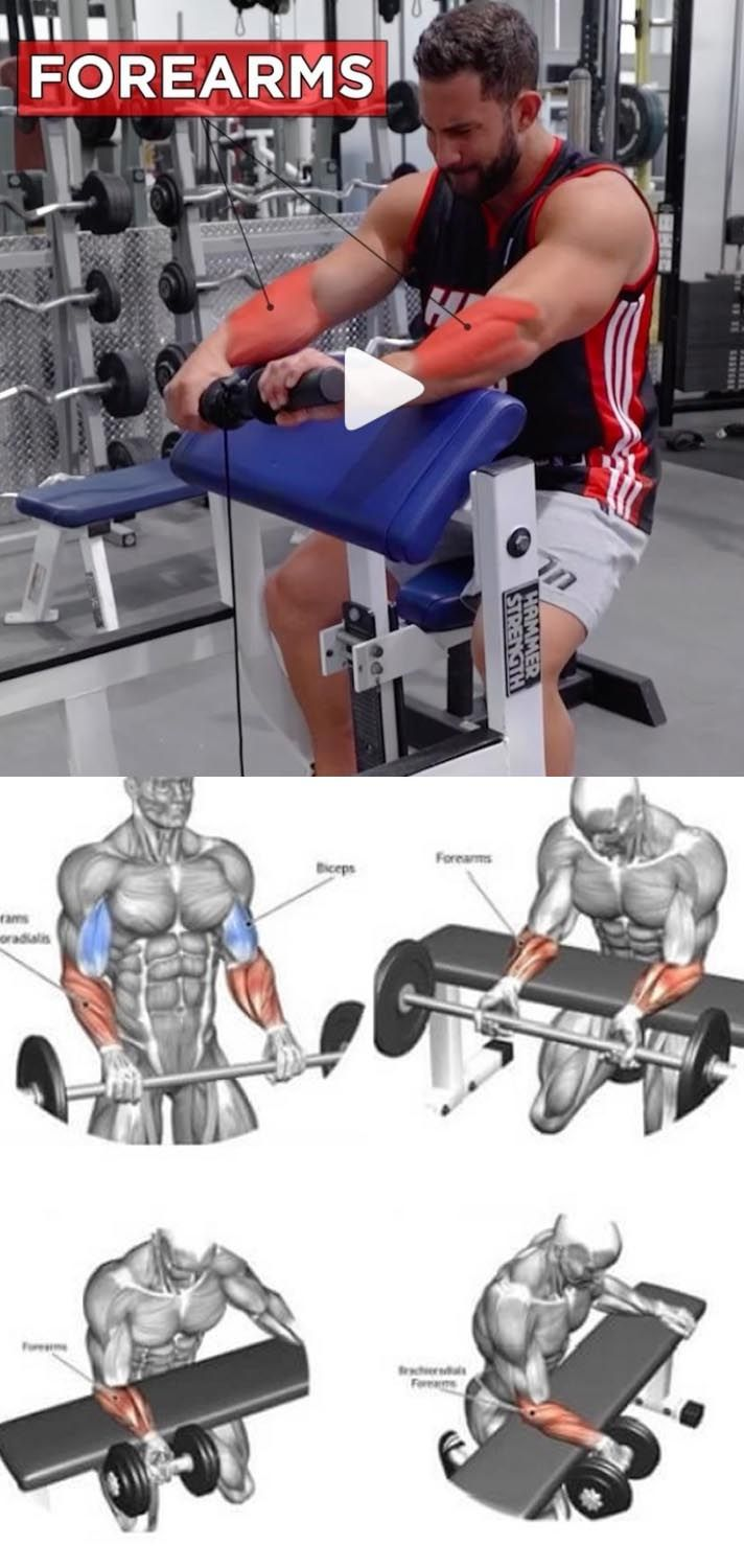 10 Best Muscle Building Shoulder Exercises: The Best Forearms Exercises Of All Time (With Images