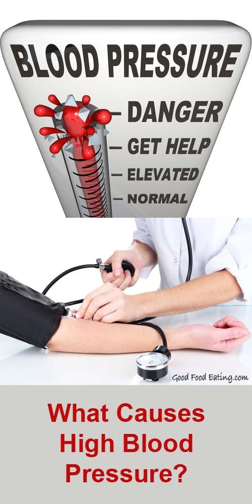 What Causes High Blood Pressure. Physiological and Dietary Factors.
