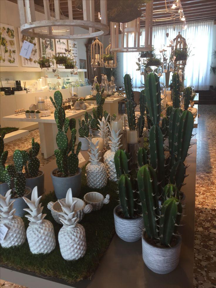 www.elisa-regali.it piante grasse e cactus in vasi bianchi.