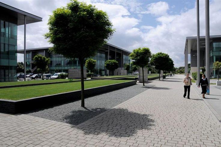 Headquarter buildings at Birchwood Park