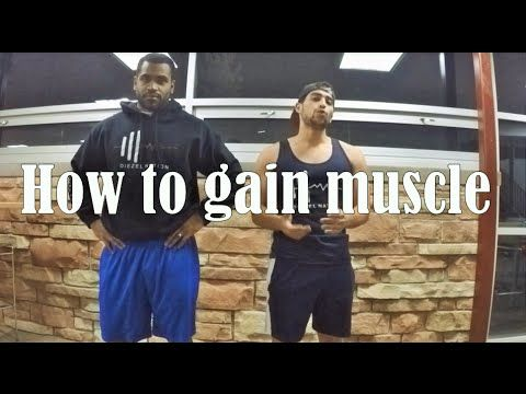 How to grow muscle and bulk correctly