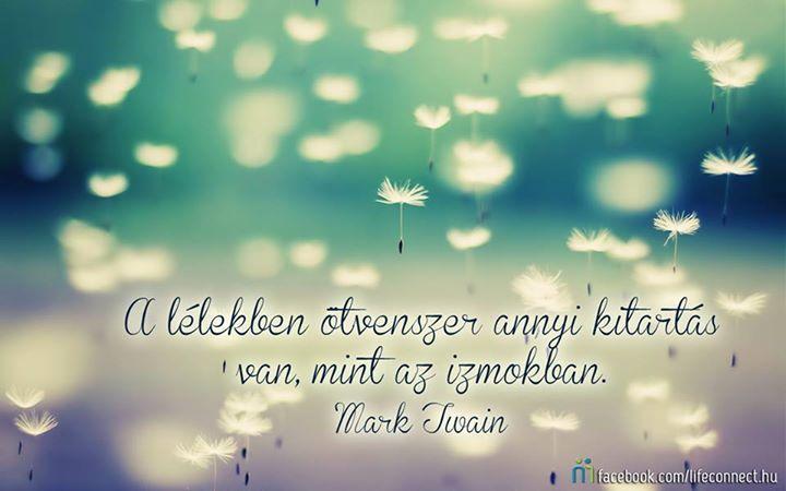 Mark Twain idézete a kitartásról. A kép forrása: LIFEconnect # Facebook