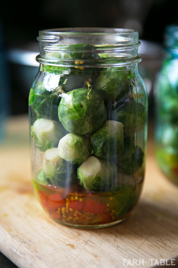 pickled brussels sprouts   canning and dehydrating food ...