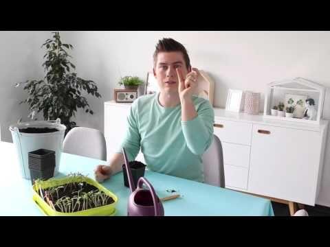 Best moestuin images vegetable garden gardening