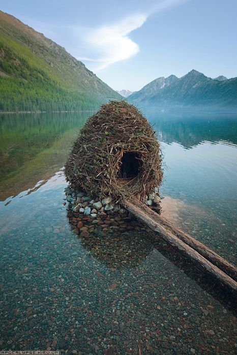 A beaver house-I could fuss with sticks for a year and not achieve that symmetry