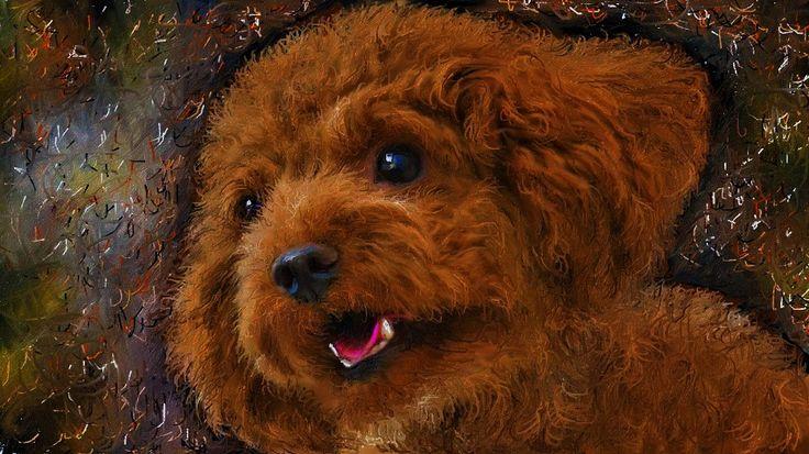 以前にお絵描きした愛犬ティアモの絵です。  映画「男と女」の芸術的な映像カットシーンに、音楽はサントラでは無くシャンソン男性歌手の歌が如何にもサウンドトラックかの様に聴こえてくるのが不思議でした、これを制作した人に拍手です。 Vincent Delerm - Deauville Sans Trintignant - Un Homme Et Une Femme http://youtu.be/sML0Udcr5N4