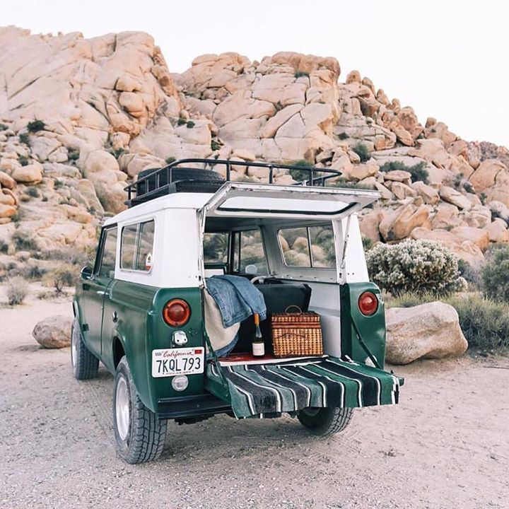 International Scout More