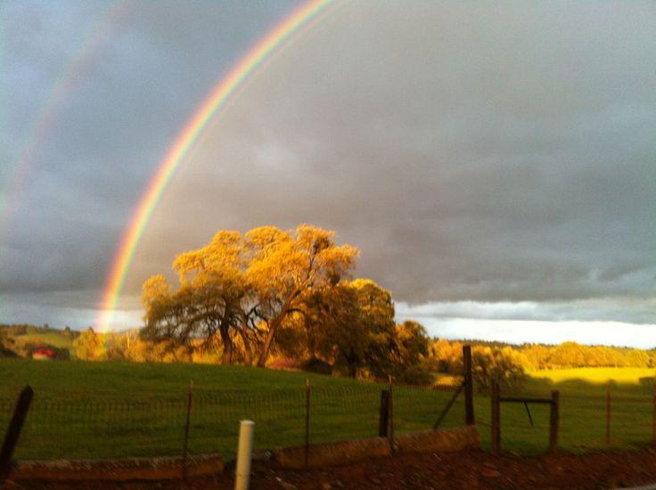 Some where over the rainbow...: Buckets Lists, Double Rainbows