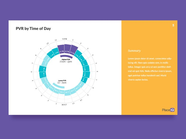 Time of Day Circular Bar Graph