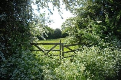 gate to the pasture: Green Gables, Secret Gardens, Cow Parsley, Hors Stables, Country Living, Gardens Gates, Country Life, Irons Gates, English Countryside