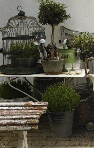 <3 IT ALL<3: Garden Ideas, Birdcages, Outdoor, Gardens, Gardening, Display, Vignette, Bird Cages