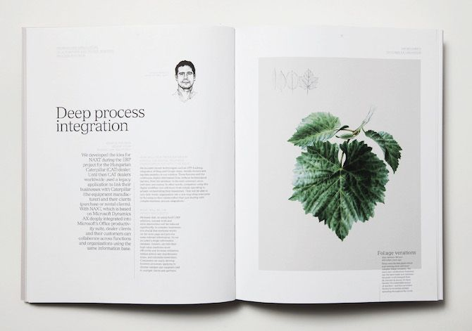 moodley brand identity: The Missing Link