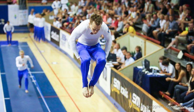Truppgymnastik - Sveriges största gymnastikdisciplin #teamgymofsweden