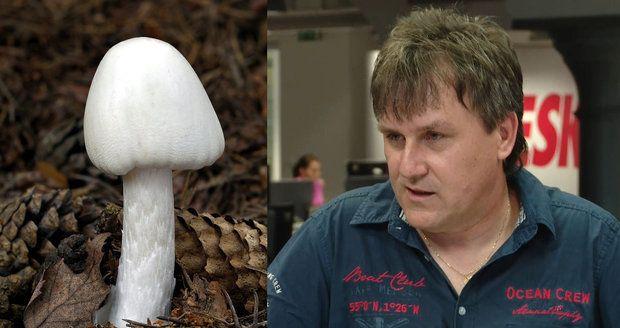 Otrávit vás mohou i jedlé houby, varuje mykolog.