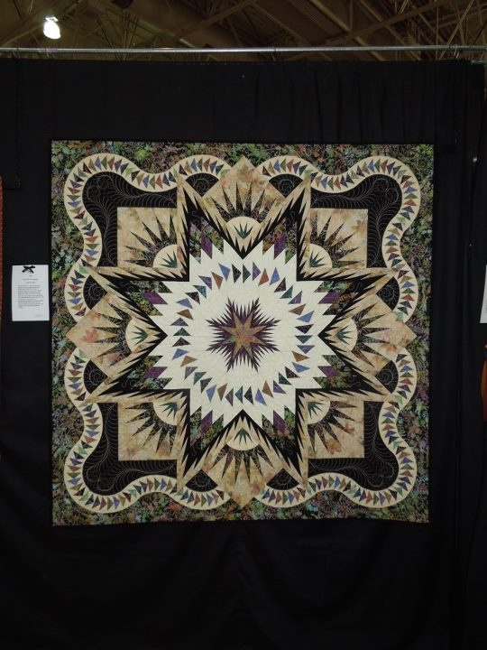 Glacier Star  Quiltworx.com   Made by Carol Carpenter I've seen this in so many colors waves...love it!